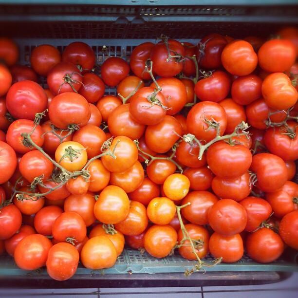 Antioksidanti v naši prehrani